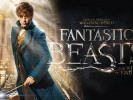 Fantastic Beasts and Where to Find Them - 003