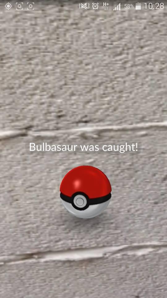 Pokémon GO (27)