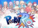 Pocket-Ro (6)