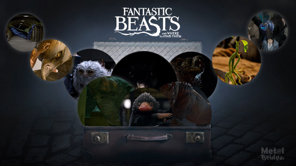 fantasticbeaststhebeastscover1