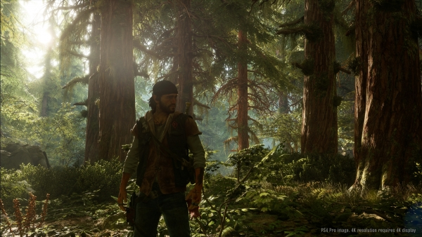 Days-Gone E3 2017 (5)