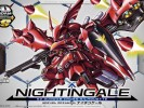 SDCS-Nightingale (3)
