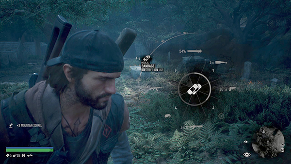 Days Gone Review (21)