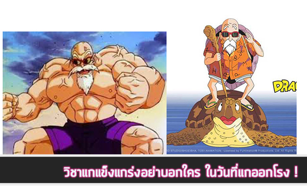 SHF-Kame-Sennin (3)