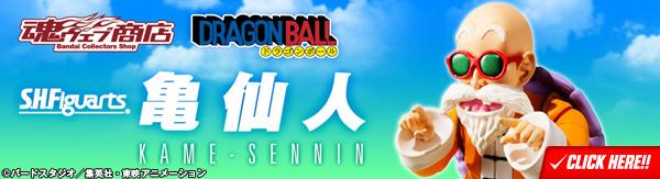 SHF-Kame-Sennin (5)