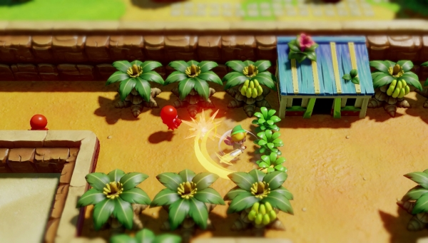 Legend_of_Zelda__Link's_Awakening Remake (3)