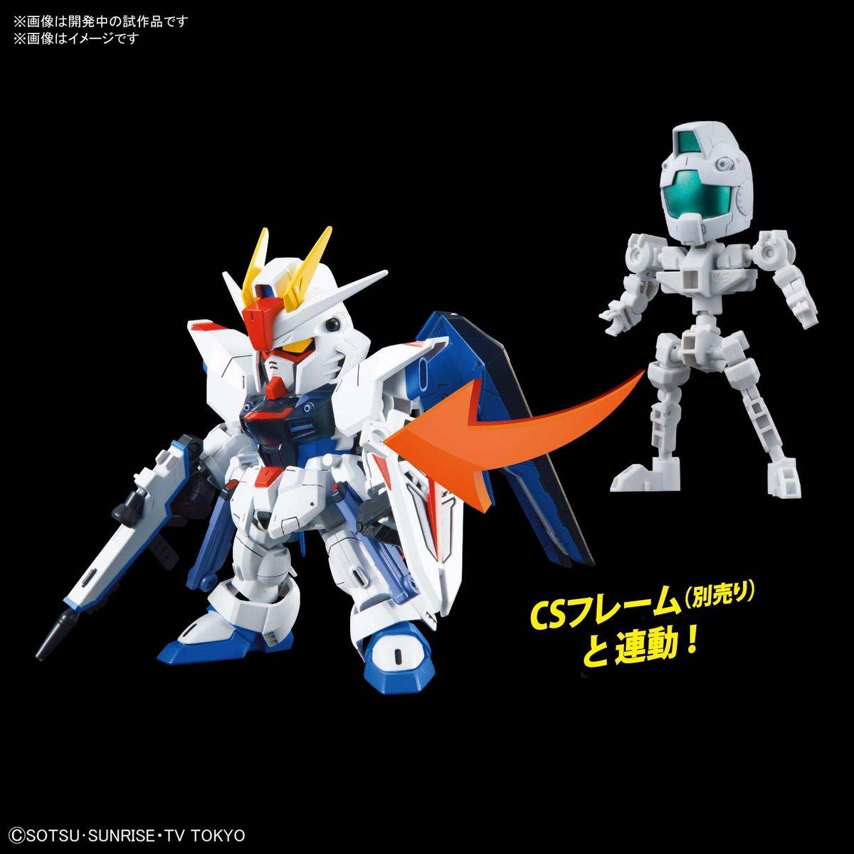 SDCS ZGMF-X10A Freedom Gundam (7)
