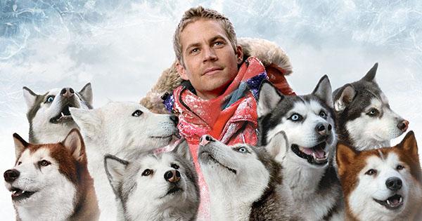 10-animal-starring-in-movie (5)