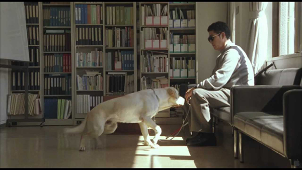 10-animal-starring-in-movie (6)